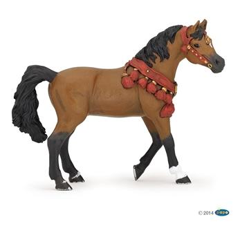 Слика на Арапски коњ во парадна опрема