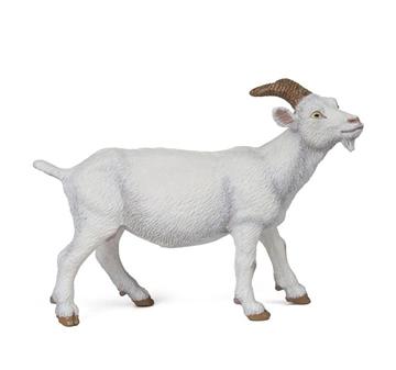 Слика на Бела коза