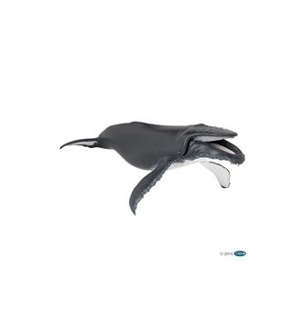 Слика на Грбав кит