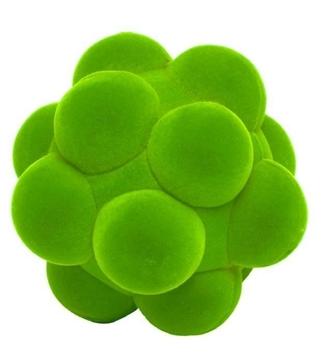 Слика на Сензорна топка - Rubbabu (Зелена, Ø 10 cm) Возрaст: 1 г+